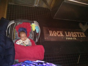 Rock Lobster , toronto with baby