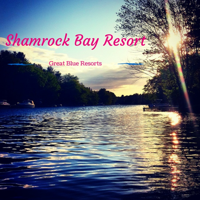 Shamrock Bay Resort reviews