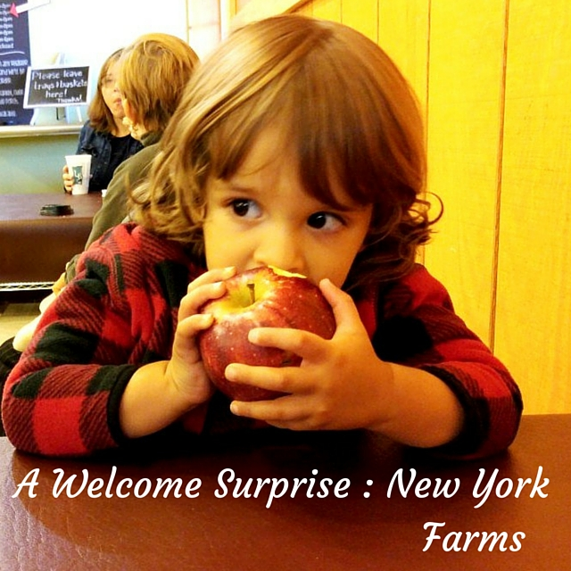 new yorks farms, a welcome surpise