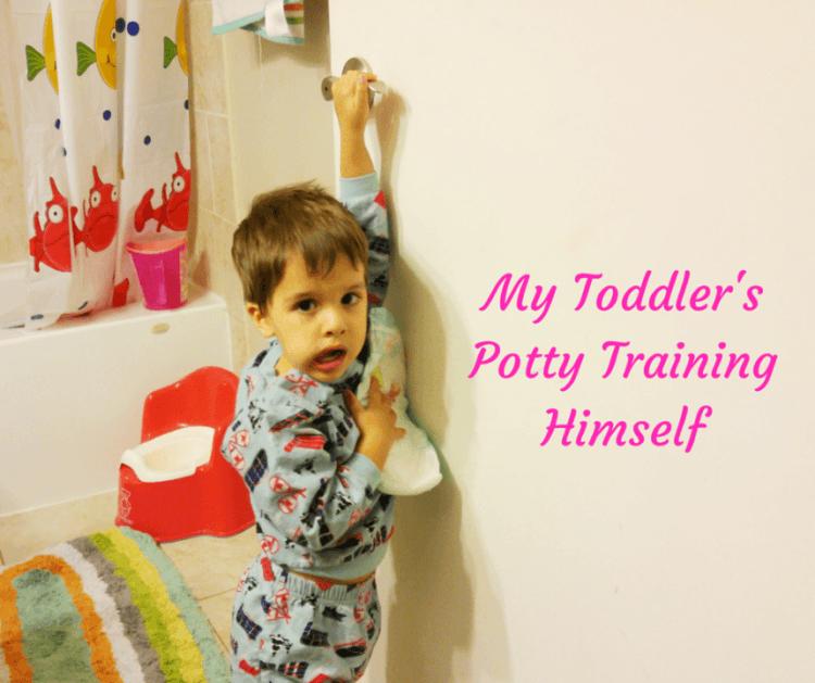My Toddler's Potty Training Himself (Custom)