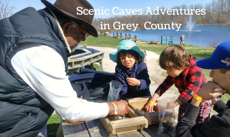 Scenic Caves Adventuresin GreyCounty