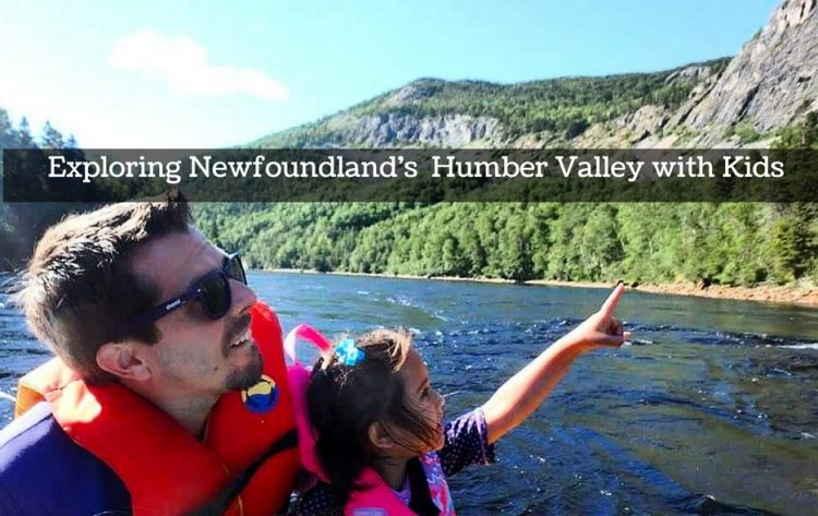 newfoundland with kids
