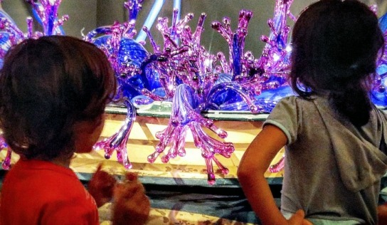 The ROM & Chihuly With Young Kids