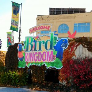 Niagara's Bird Kingdom with Grandparents