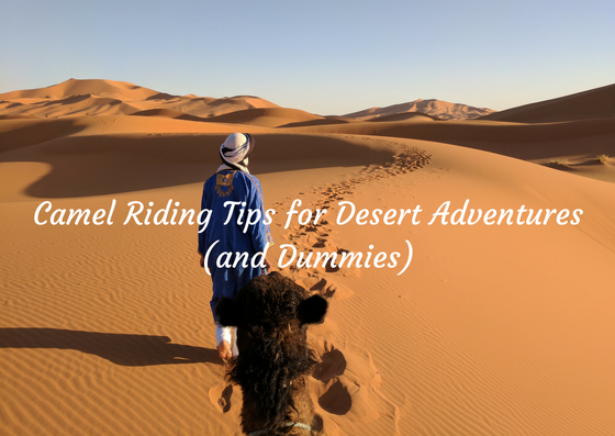 Camel riding in Sahara Desert