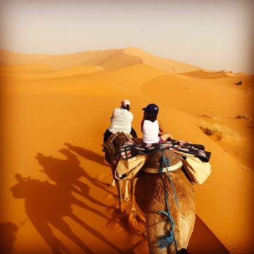 Camel Riding Tips for Desert Adventures (and Dummies)