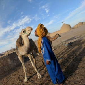 what to do in the desert morocco