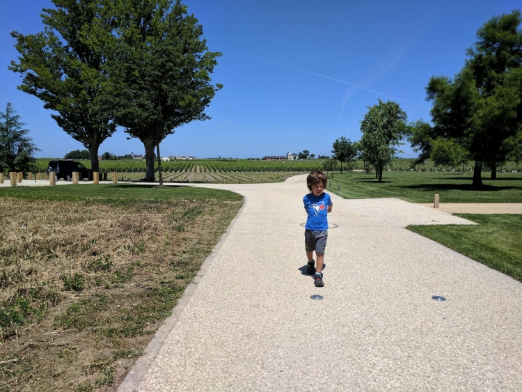 Bordeaux winery with kids