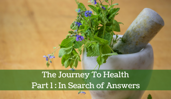 The Journey To Health | Part 1 : In Search of Answers