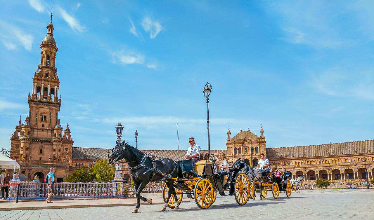Plaza de España Horse