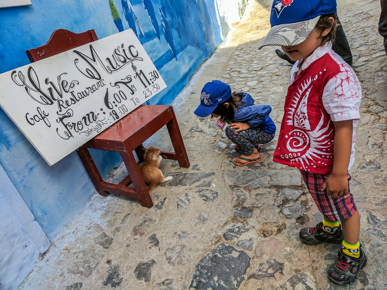 Chefchaouen Stray Cats
