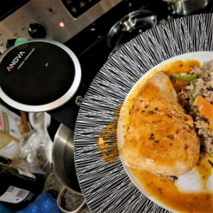 Gourmet Meals with the Anova Precision Cooker | Review
