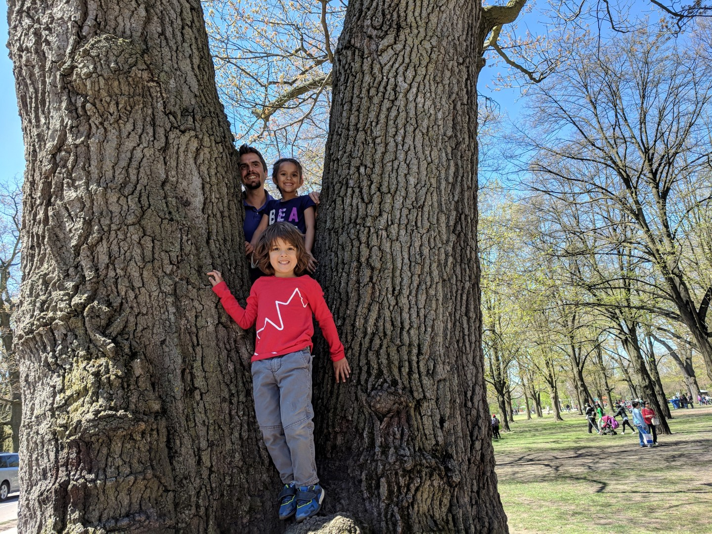 Things to do in Toronto with Kids : High Park