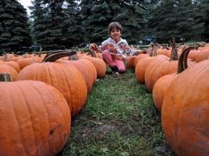 best farm for pumpkins in ottawa, fall fun for kids in ottawa