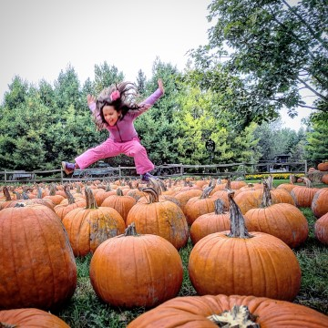 PUMPKIN PATCH FOR KIDS IN oTTAWA