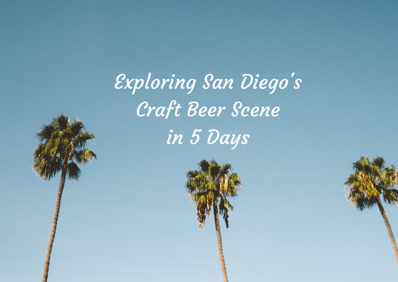 best craft beer in San Diego