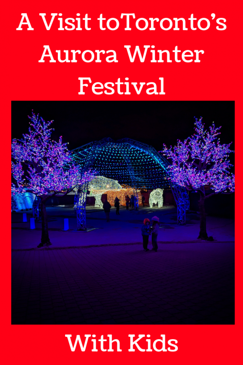 Tips for visiting AUrora winter festival with young kids