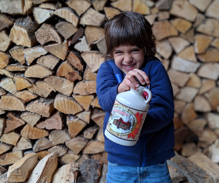 Travelling with kids for maple syrup season