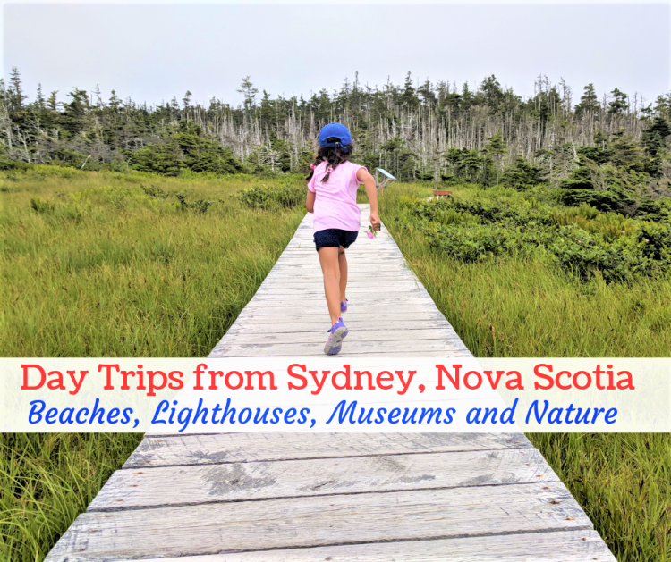 day trips from sydney cape breton, things to do in sydney ns