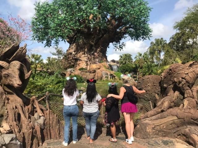 kid free at Disney World