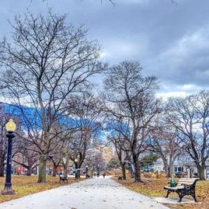 Condobound in Toronto -Week 1 Plans