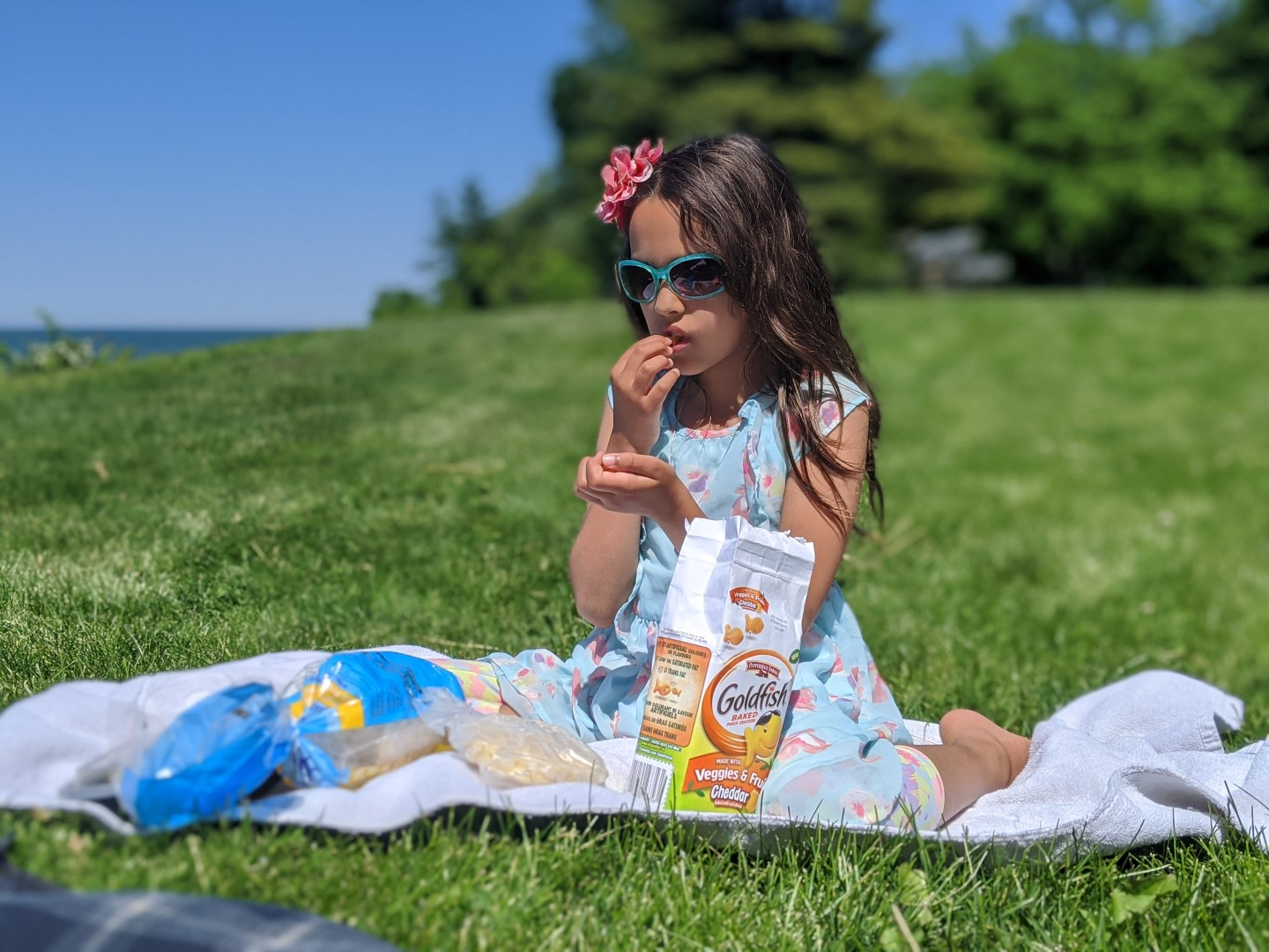 girl wearing sunglasses picnic in grass with goldfish