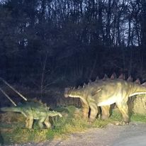 Dinosaurs seen on day trip from Toronto