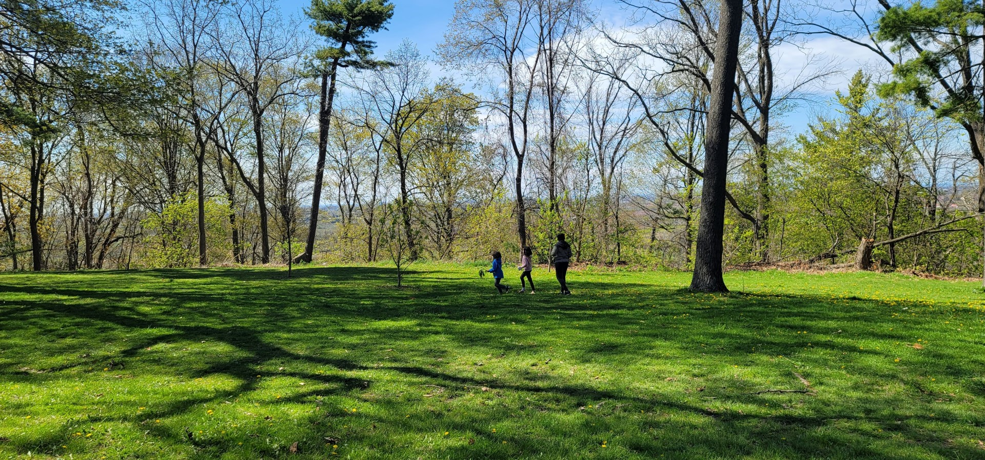 family in park at Queenston Heights Park