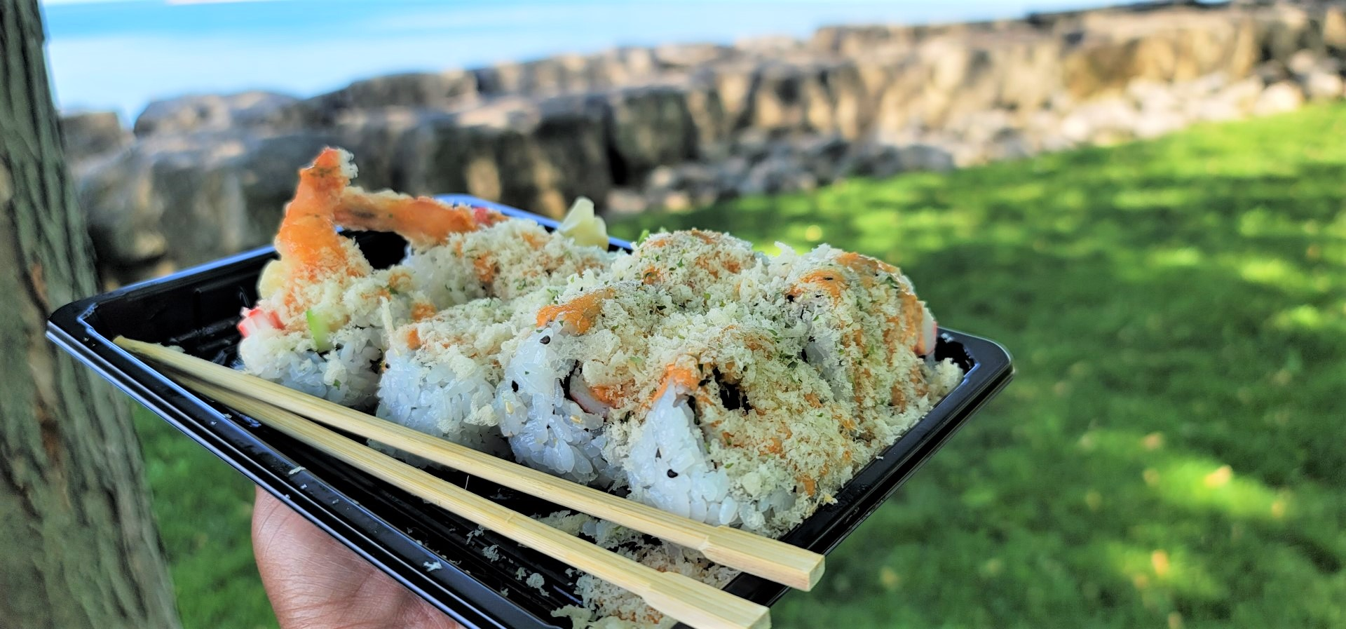 Sushi plate with beach view