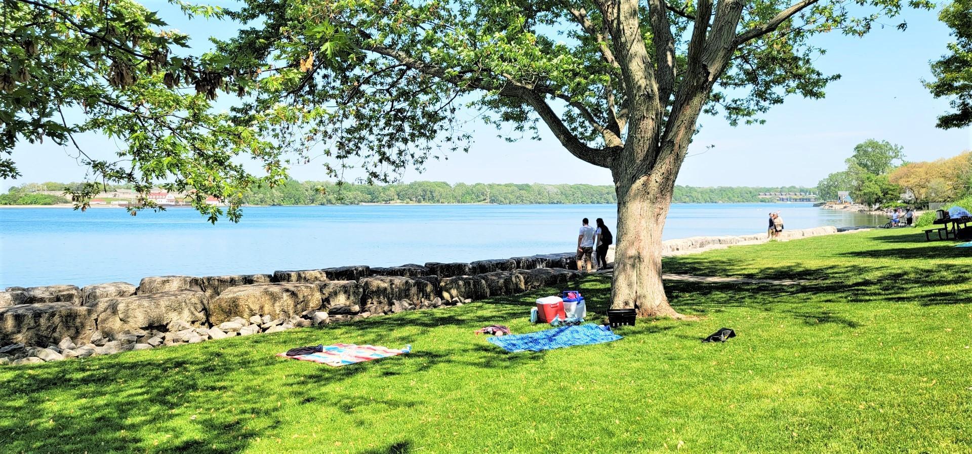 picnic in Niagara on the Lake