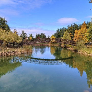 Plan a Perfect Picnic in Niagara-on-the-Lake