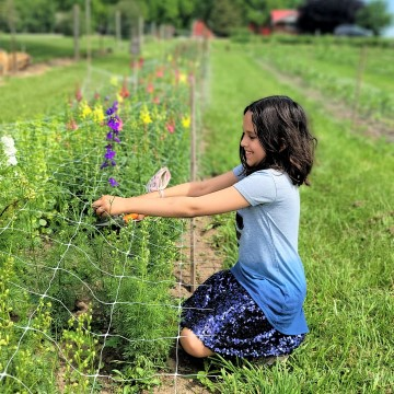 Oxford County Cheese Trail with Kids | Ontario Road Trips