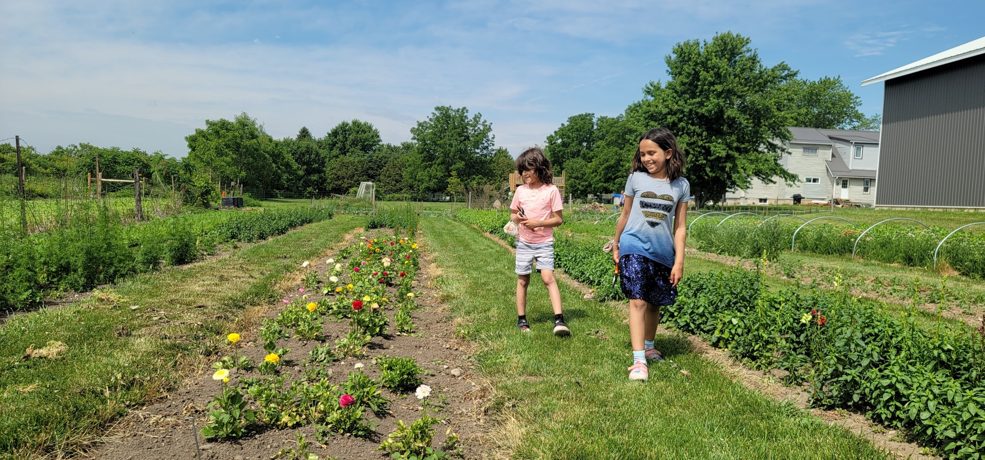 Kids running through flower fields