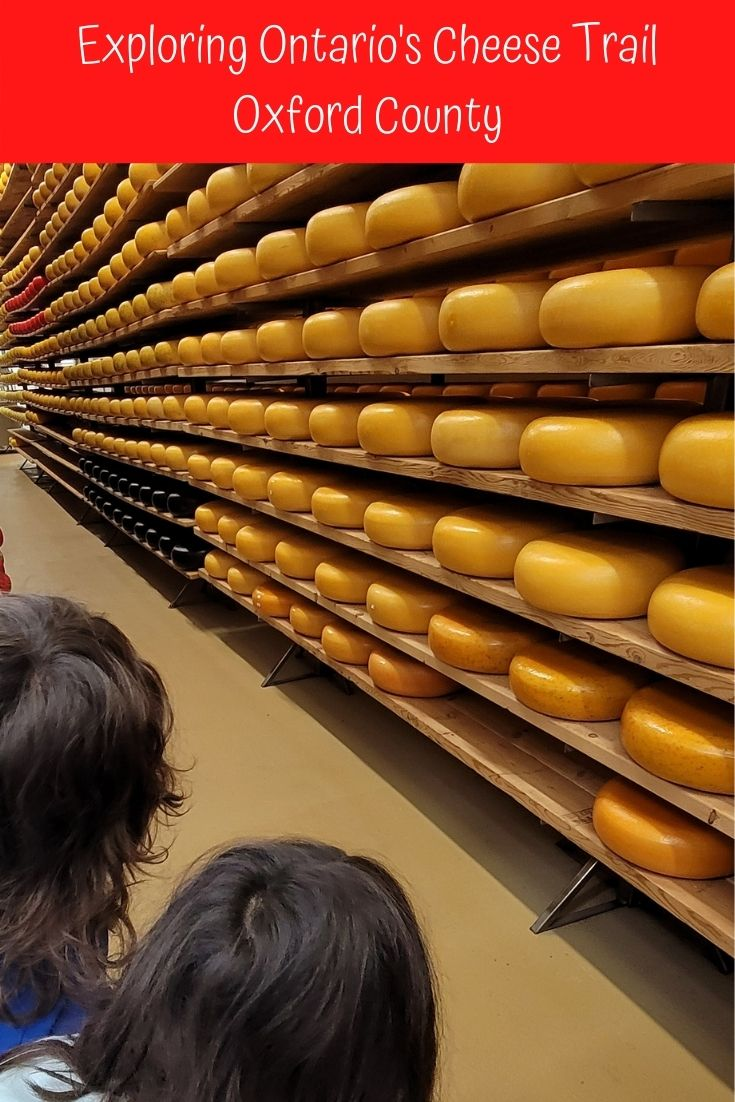 Ontario Cheese trail with kids