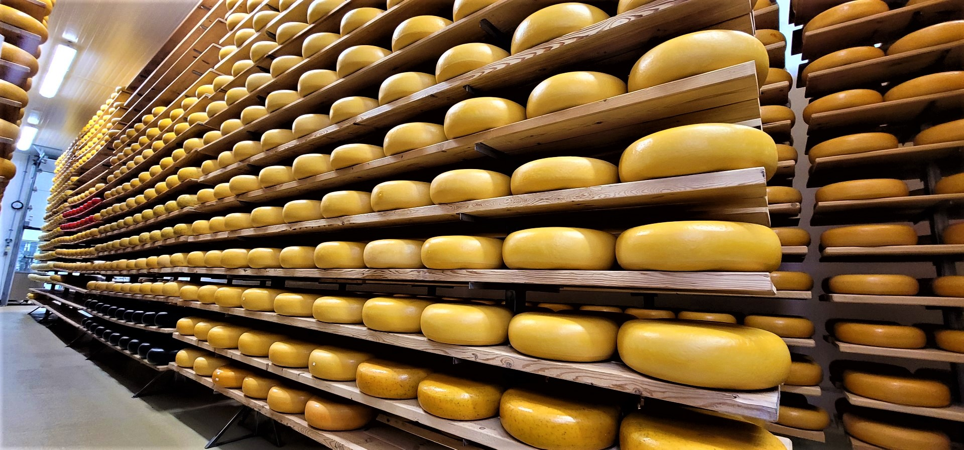 Oxford County Cheese Room