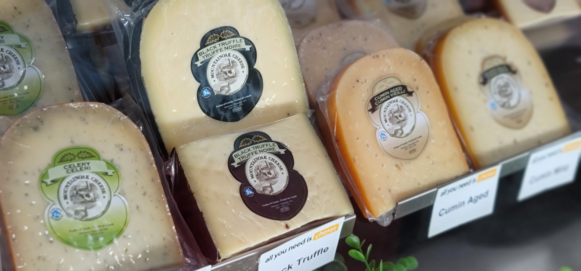 Truffle cheese on display