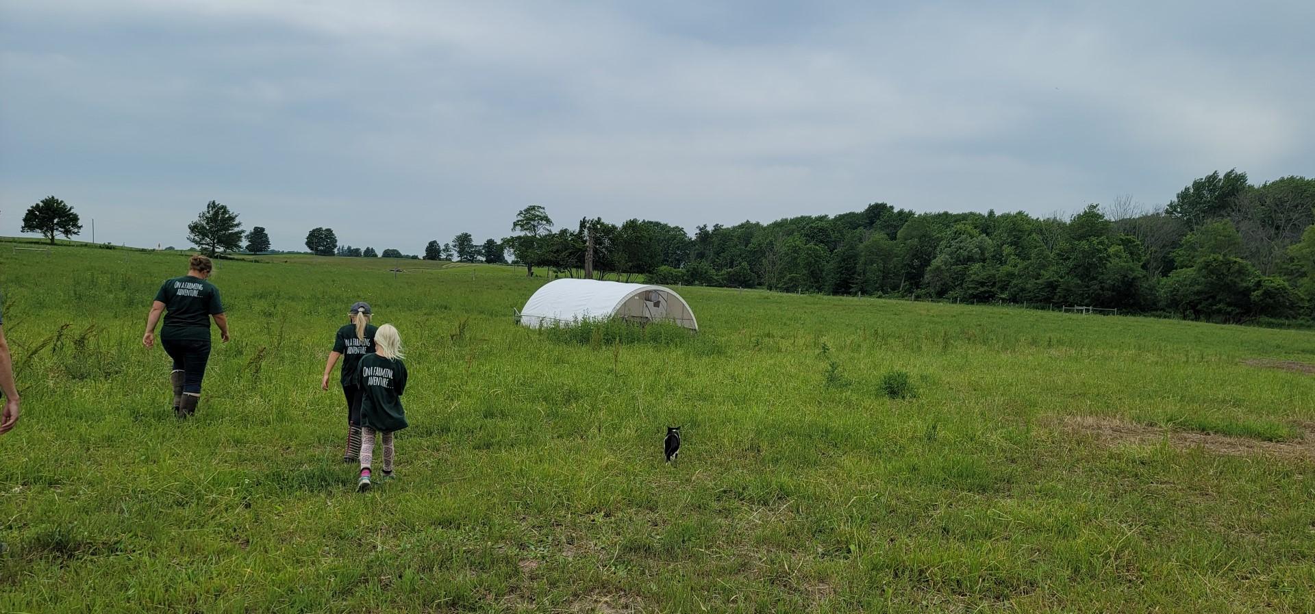 family running through greener pastures farm