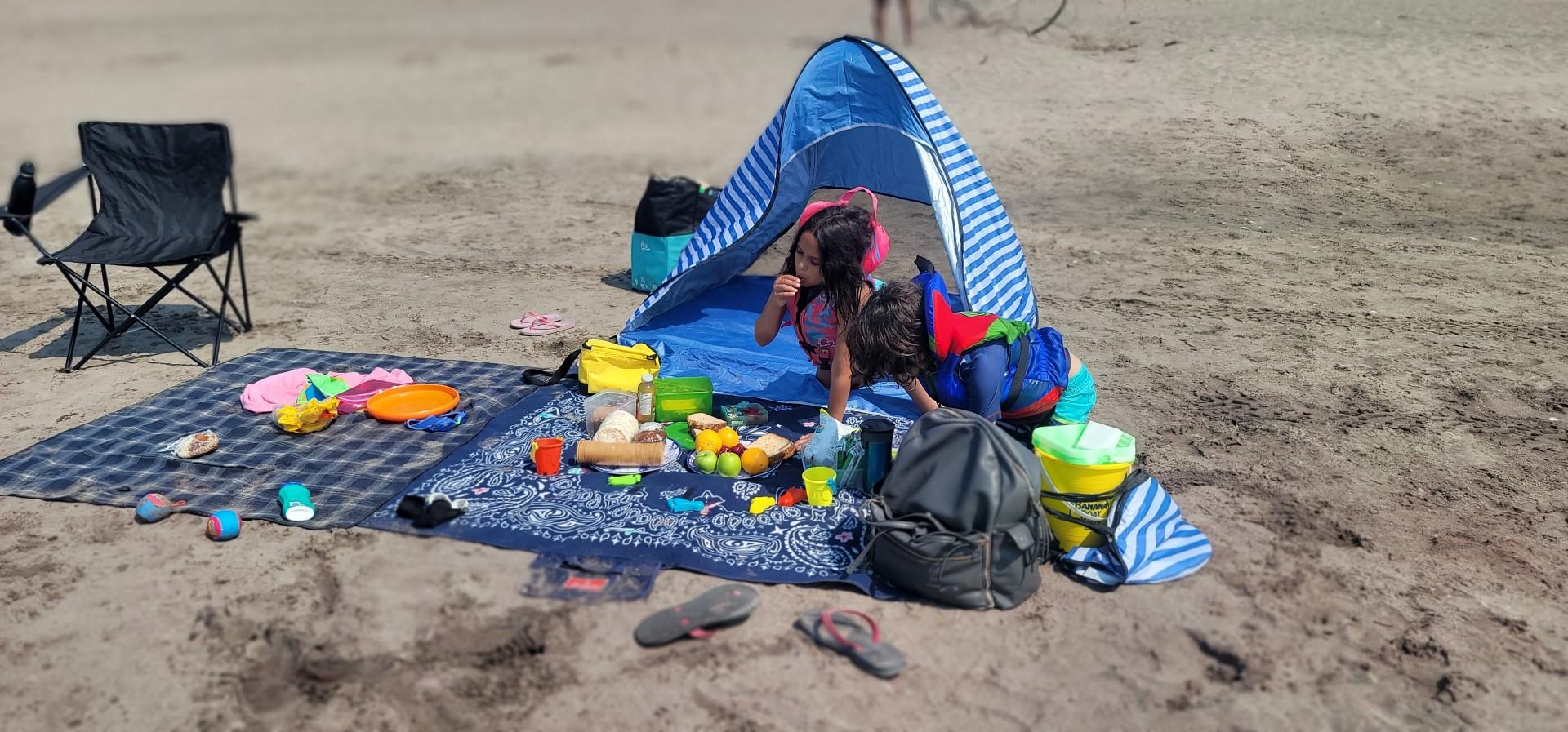 kids having a picnic at the beach