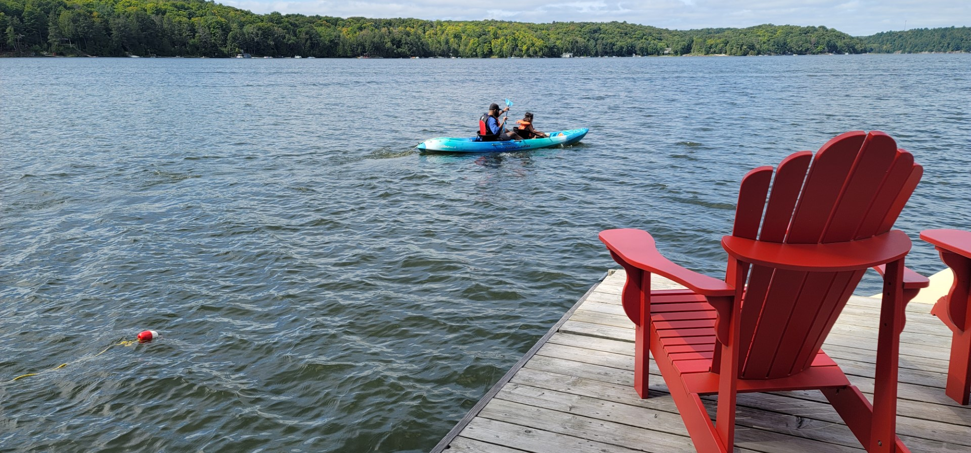 two people on kayak in the water with trees and dock